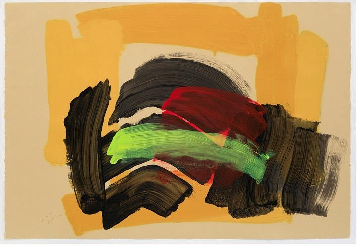 Howard Hodgkin. Foto 1
